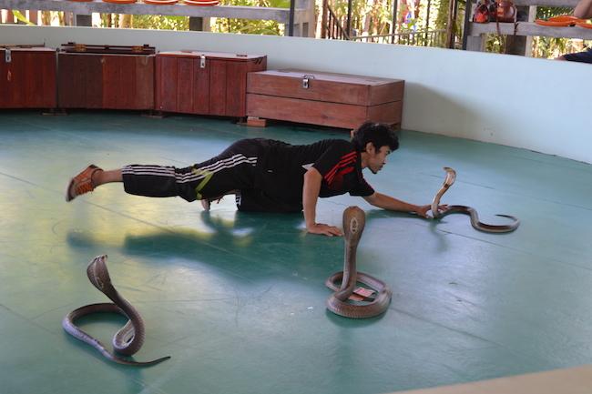 Фотография из Тайланда - представление