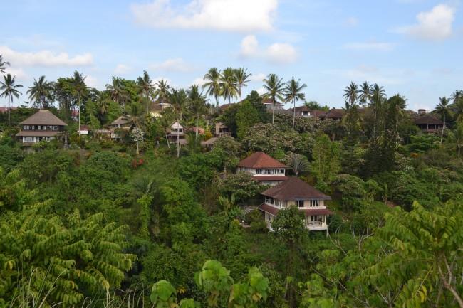Bali00014